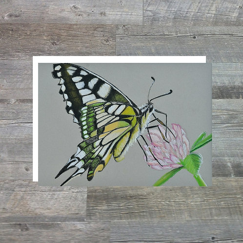 Butterfly - Greetings Card (A6)