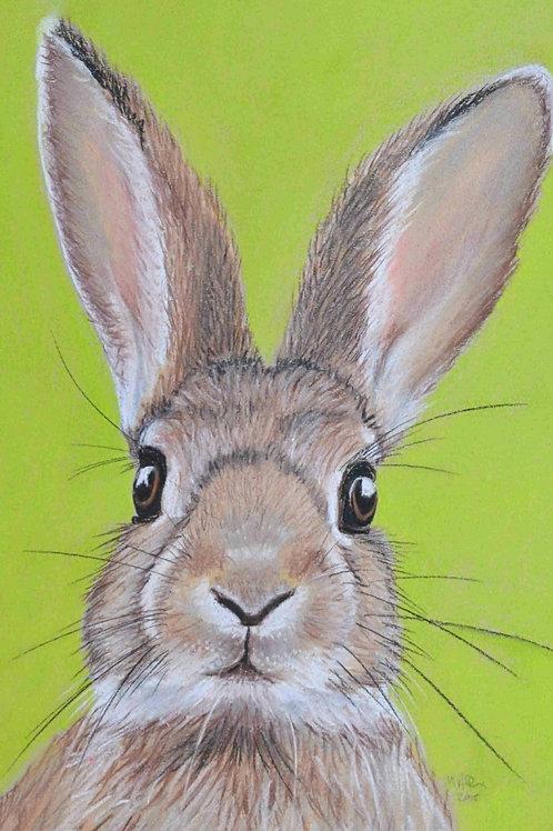 Rabbit - Limited Edition Print