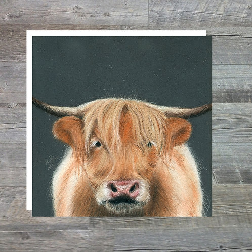 Highland Cow - Greetings Card (15x15cm)