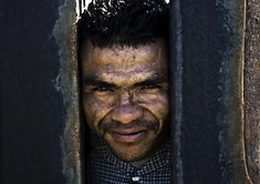 face thru fence_Graham Mickle.jpg