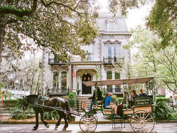 Savannah-EricaRobnett-01.jpg