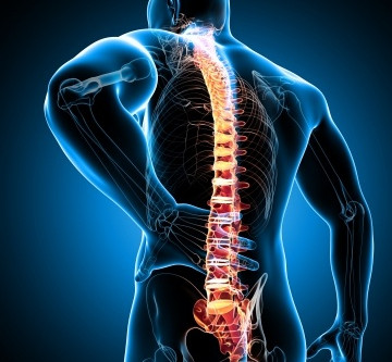 Improving Quality of Life while Living with Chronic Pain