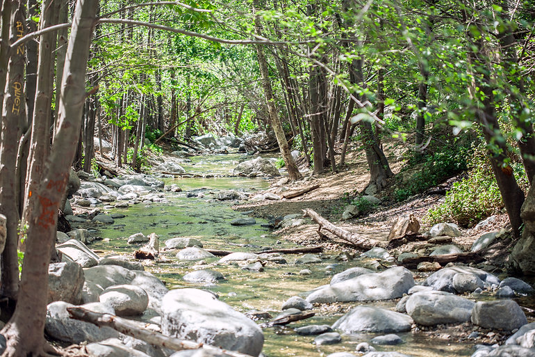 Eaton Canyon Stream running alongside Ea