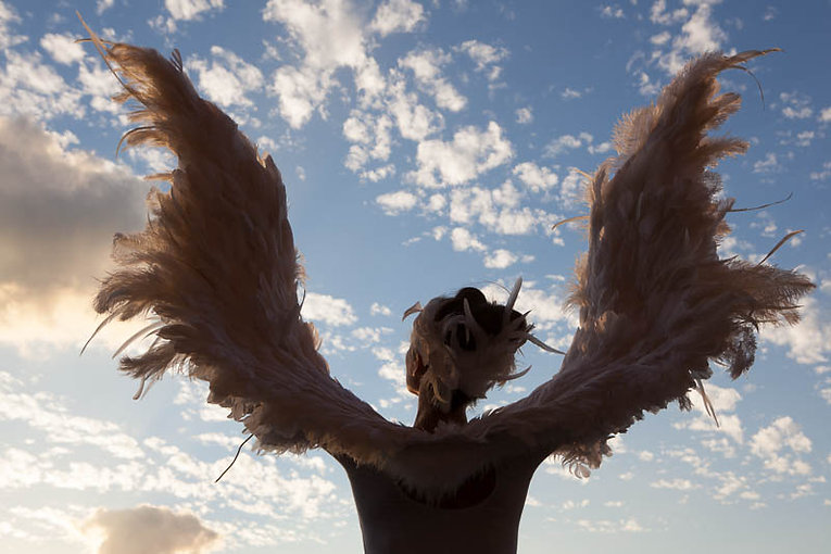 Angel Bird.jpg