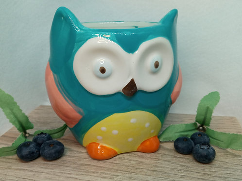 Limited Edition Ceramic Owl
