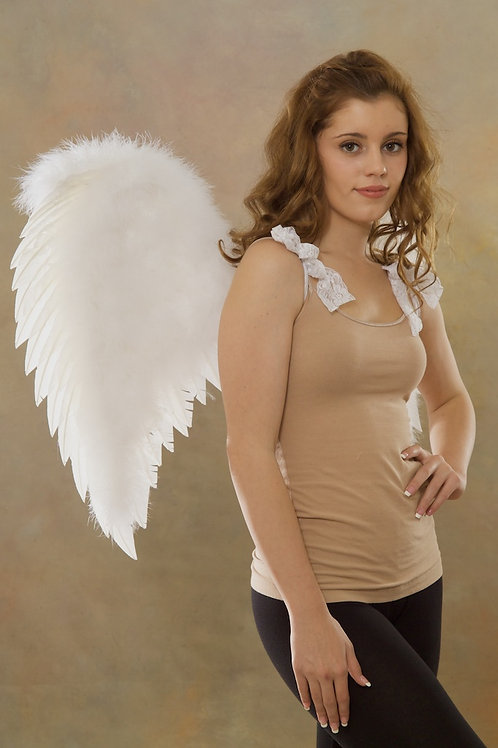 A40 Style Angel Wings