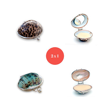 Kit Shells Tiger + Turquoise