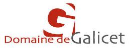 logo_galicet.jpg