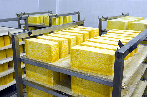 Industrial production of hard cheeses.jp