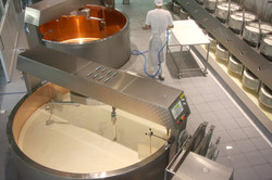 Interior of a cheese factory with modern