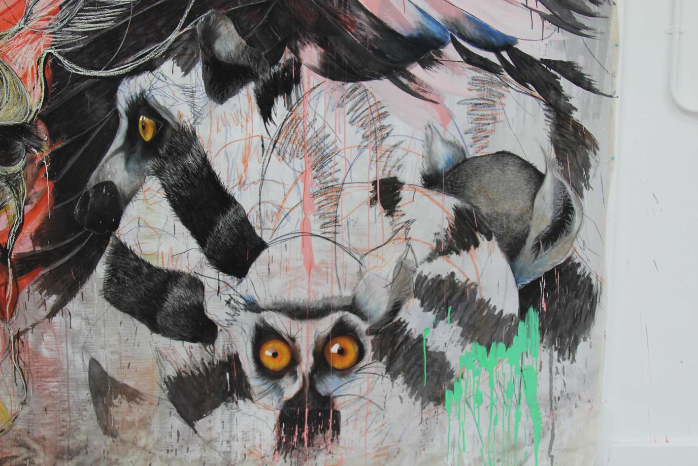 Lemur close up