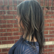 Silver Highlights