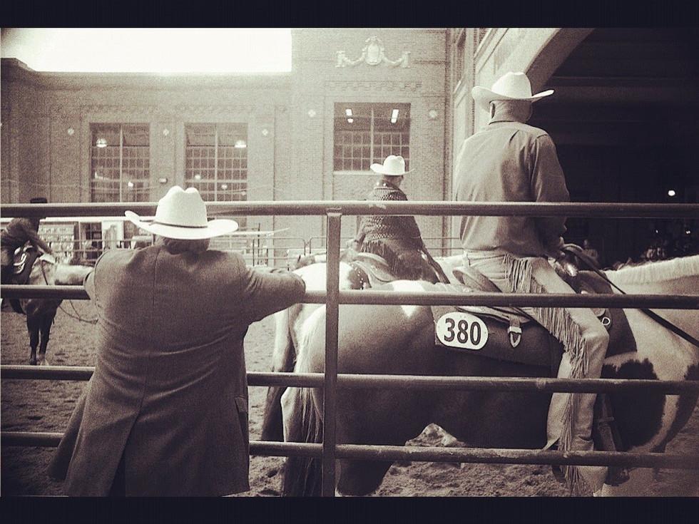 Horse Show, Minnesota State Fair