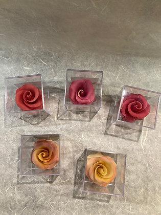 Rosa di cioccolato