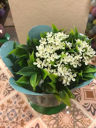 Porta piante azzurro
