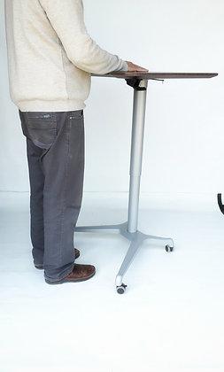 עמדת עבודה - עמידה/ישיבה