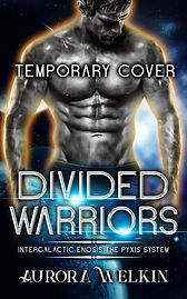 Divided Warriors Ebook.jpg
