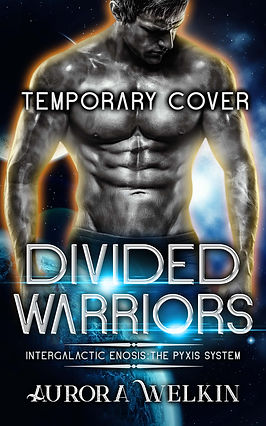 Divided Warriors Ebook.jpg