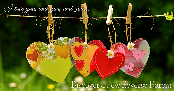 Bookfunnel Discover a new Reverse Harem.