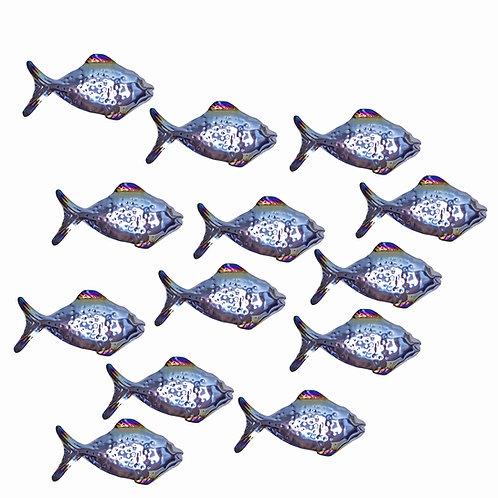 Shoal of 12 Shiny Grazing Fish