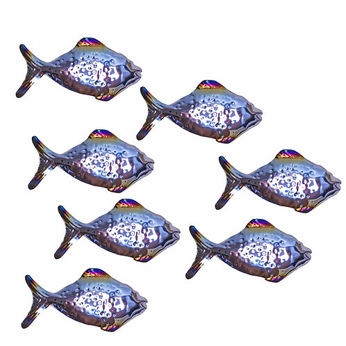 Shoal of 7 Shiny Grazing Fish