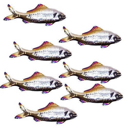 Shoal of 7 Silver Predator Fish