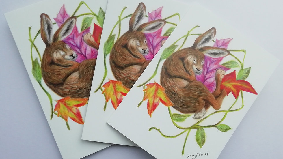 Sleeping hare notelet card pack of 5