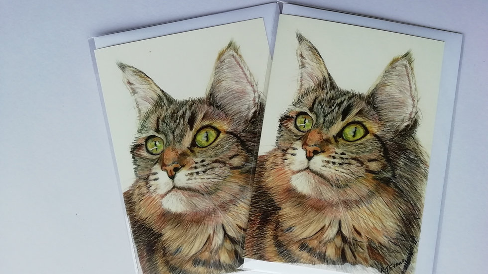 Cat notelet card - pack of 5