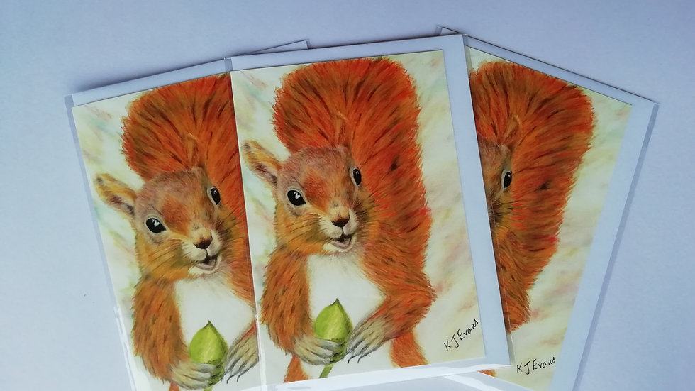 Squirrel notelet card - pack of 5