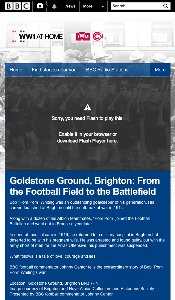Screenshot of BBC WW1 at home feature