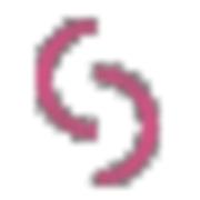 SSP Logo png.png