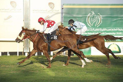 SHEIKH DOWN Wins Over Huge field in UAE
