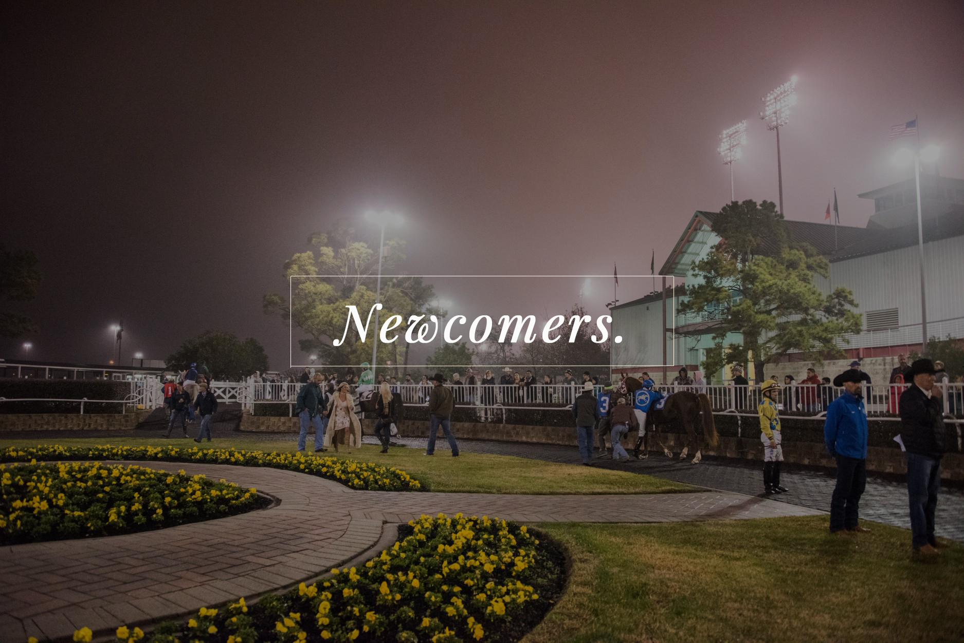 Homepage Newcomers copy.jpg