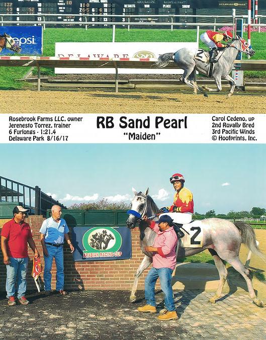 RB Sand Pearl.Del 8-16-17.jpg
