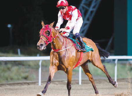 RB Money to Burn Leads Way for Strong International Representation by Rosebrook Far,