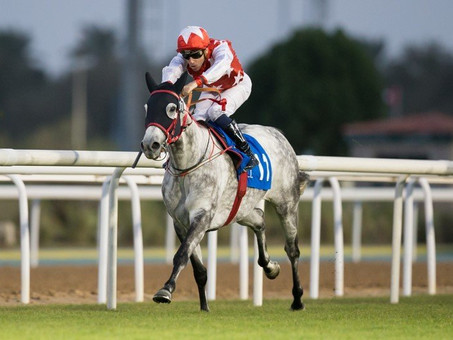 RM Lam Tara Takes Shadwell Stud Al Ruwais Stakes (Group 3) in Abu Dhabi