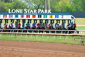Lone_Star_Park_horse_race.jpeg