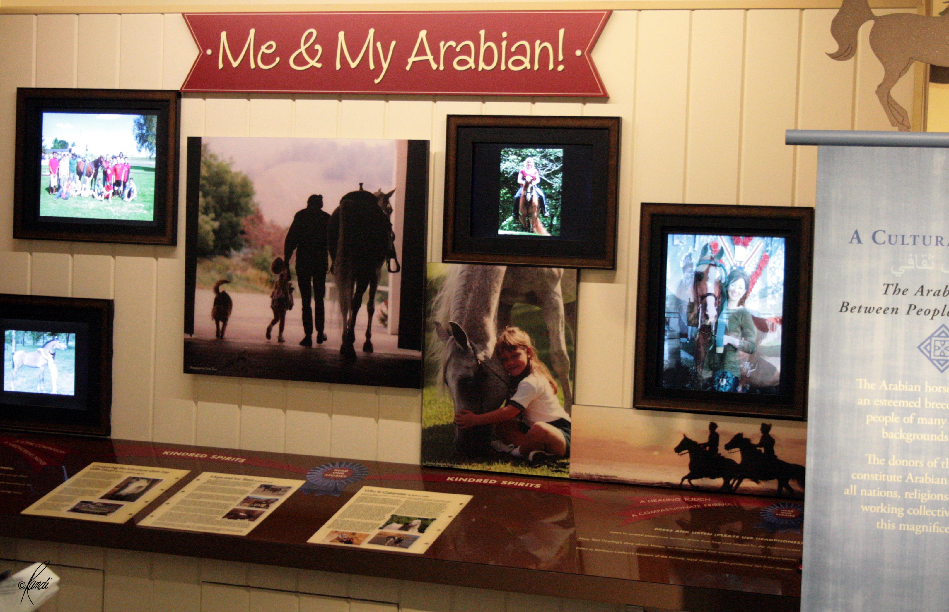 Al-Marah Arabian Horse Gallery Opening 6.12.2010 (38)
