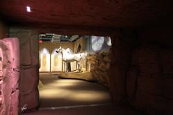 Al-Marah Arabian Horse Gallery Opening 6.12.2010 (197)