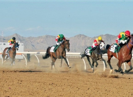 RB Kinsman Stakes Winner of 3 Races in Oman in only 4 Lifetime Starts as 3YO in 2019
