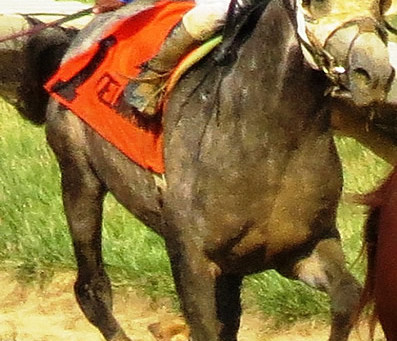 RB BRILLIANT Gets Another Win for Owner Garrett Ford