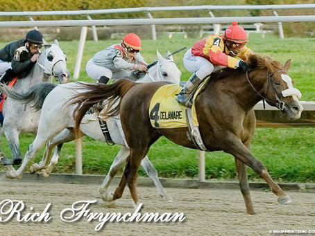 RICH FRYNCHMAN Runs Down the Best Horses in the USA