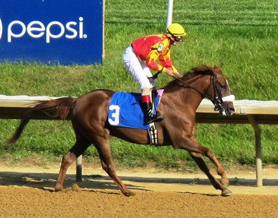 WYCKED Wins at Delaware