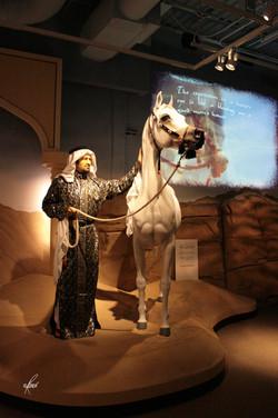 Al-Marah Arabian Horse Gallery Opening 6.12.2010 (199)