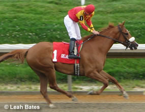 SAND WITCHH wins the BETSY ROSS DISTAFF STAKE G3