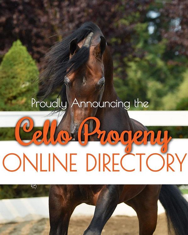 cello progeny directory image.jpg