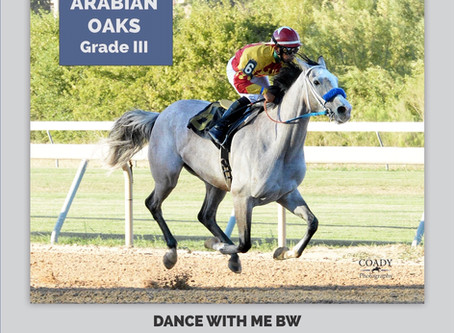Dance With Me BW Takes Texas Oaks and DE Park Turf Classic; Remains Leading 4 Year Old Filly in USA