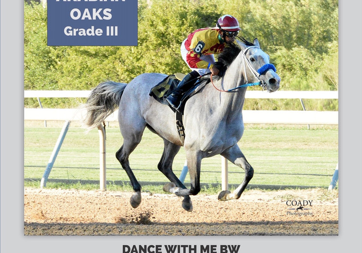 Dance With Me - 2019 Texas Oaks