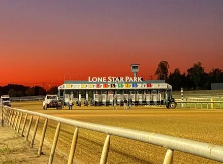 Upcoming Arabian Races at Lone Star