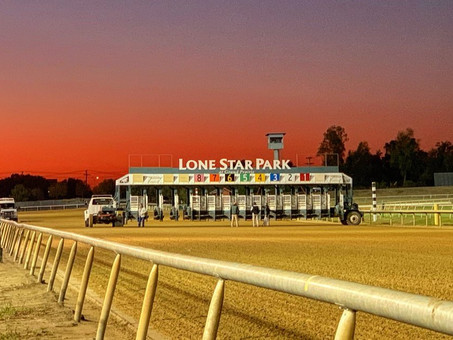 Upcoming Arabian Races at Lone Star